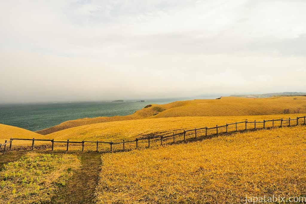 霧多布湿原 琵琶瀬展望台
