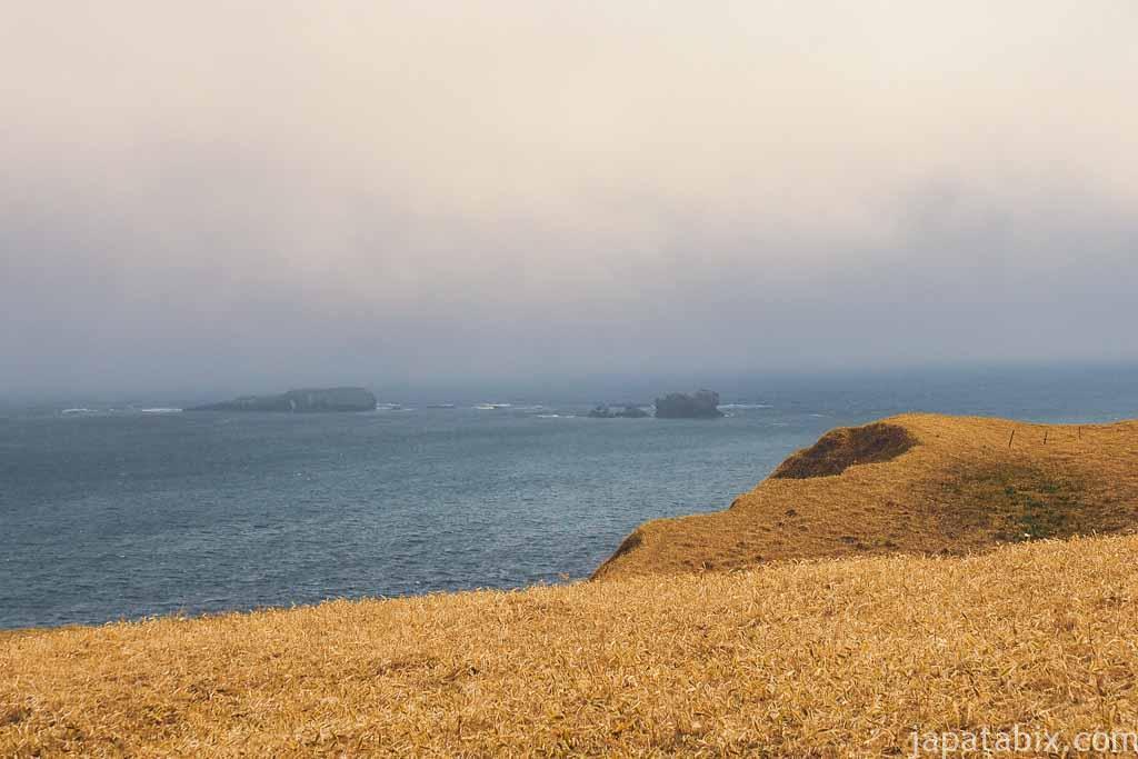 琵琶瀬展望台から見る窓岩