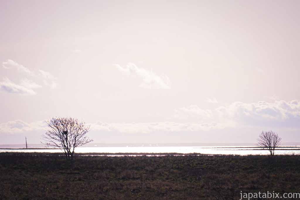 道道950号線 野付風連公園線から見るオホーツク海
