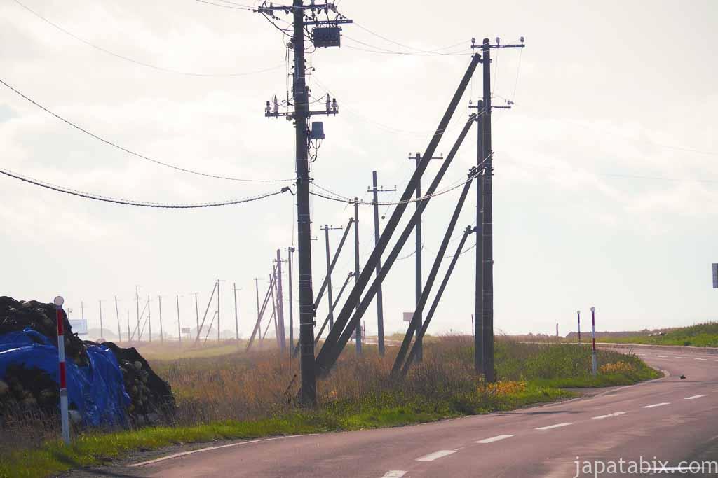 道道950号線 延々と続く電柱