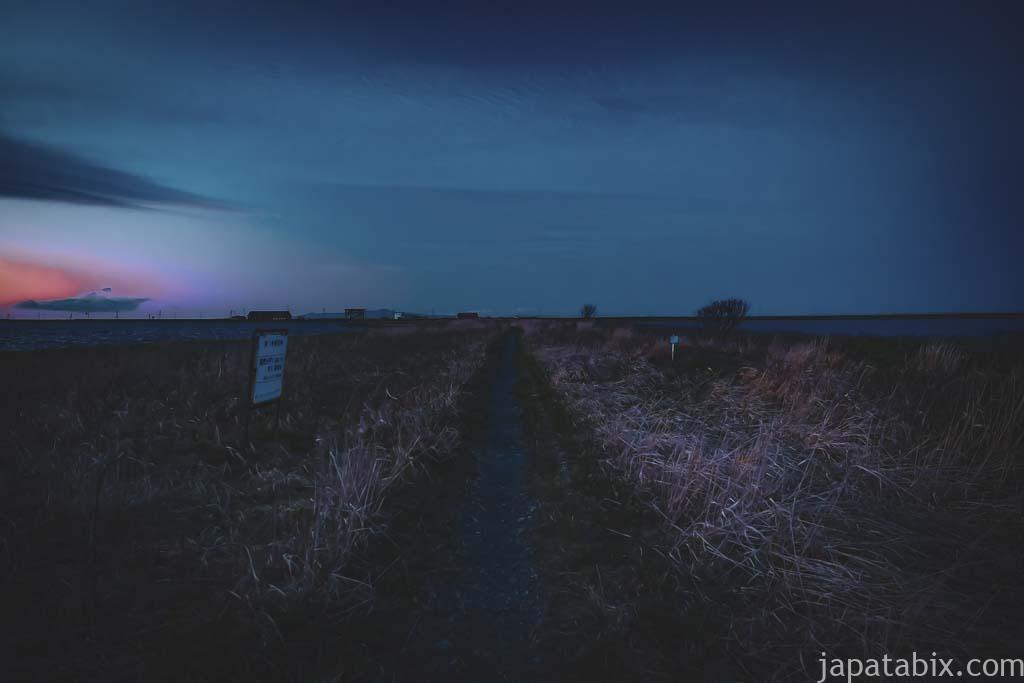 日没後の遊歩道