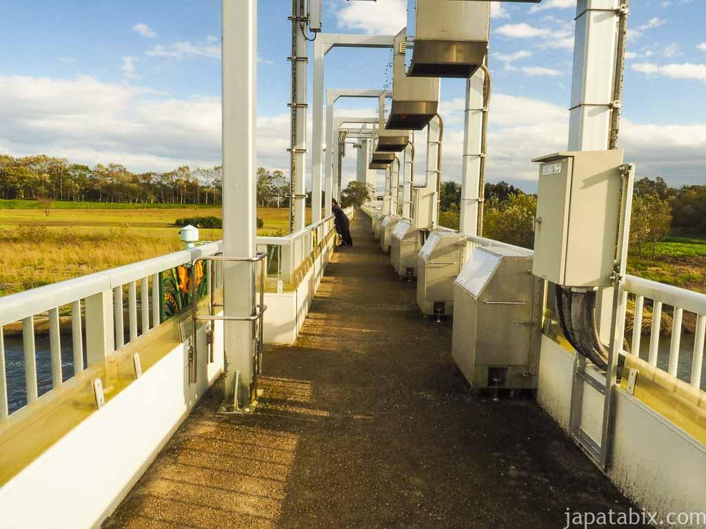 標津サーモンパーク 標津川 サケの観覧橋