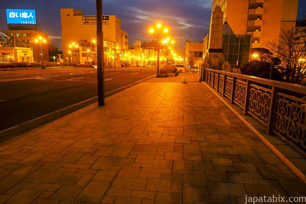 幣舞橋の夜