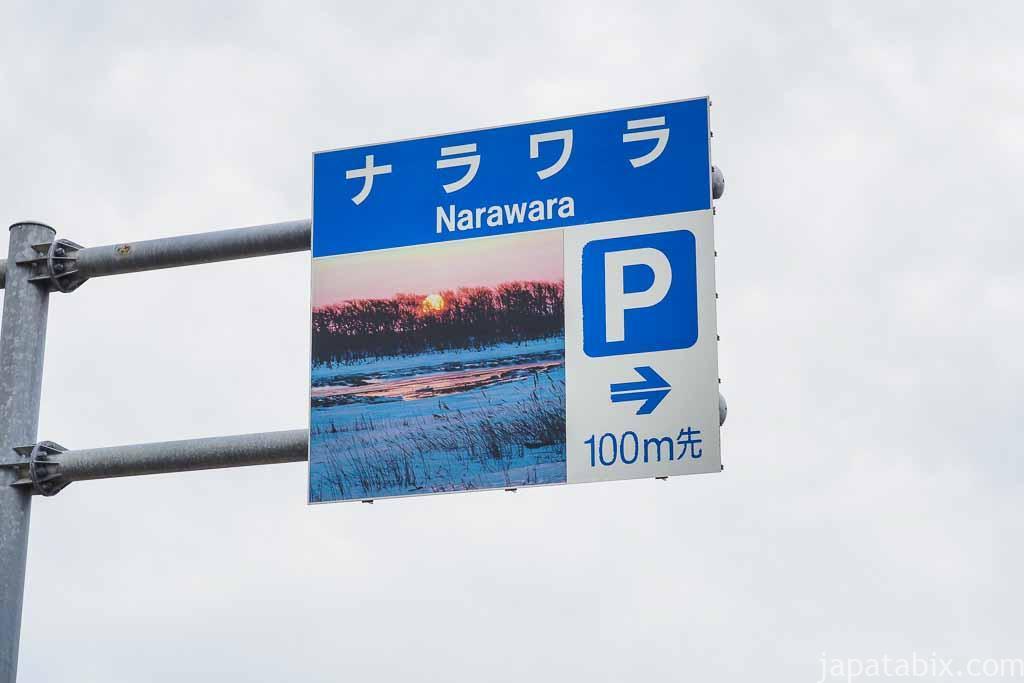 野付半島 ナラワラ