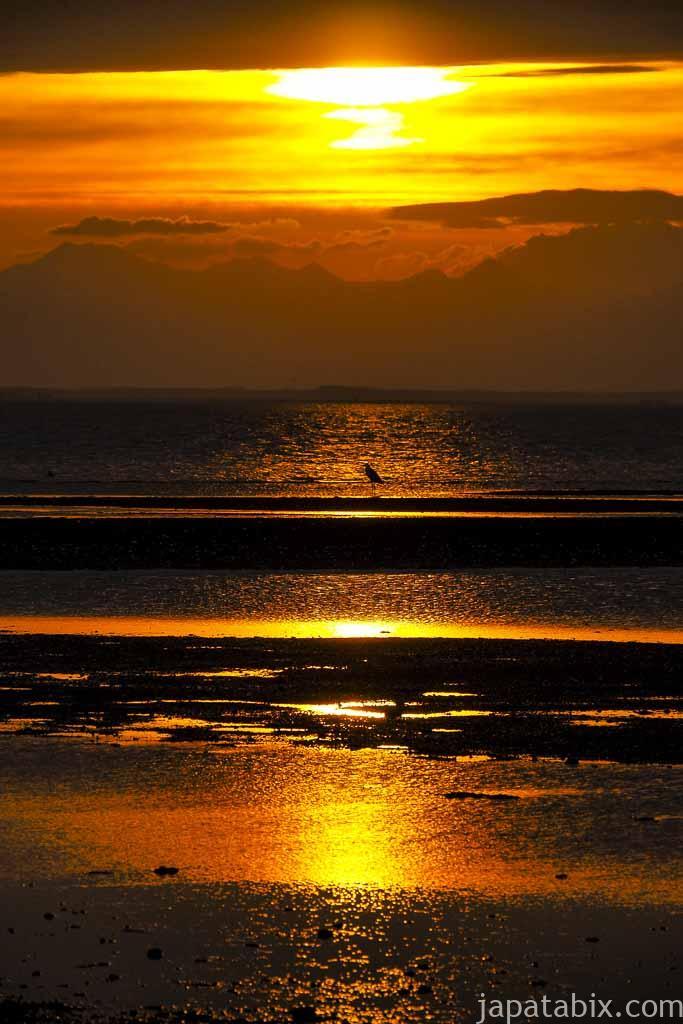 野付半島の夕日と野鳥のシルエット