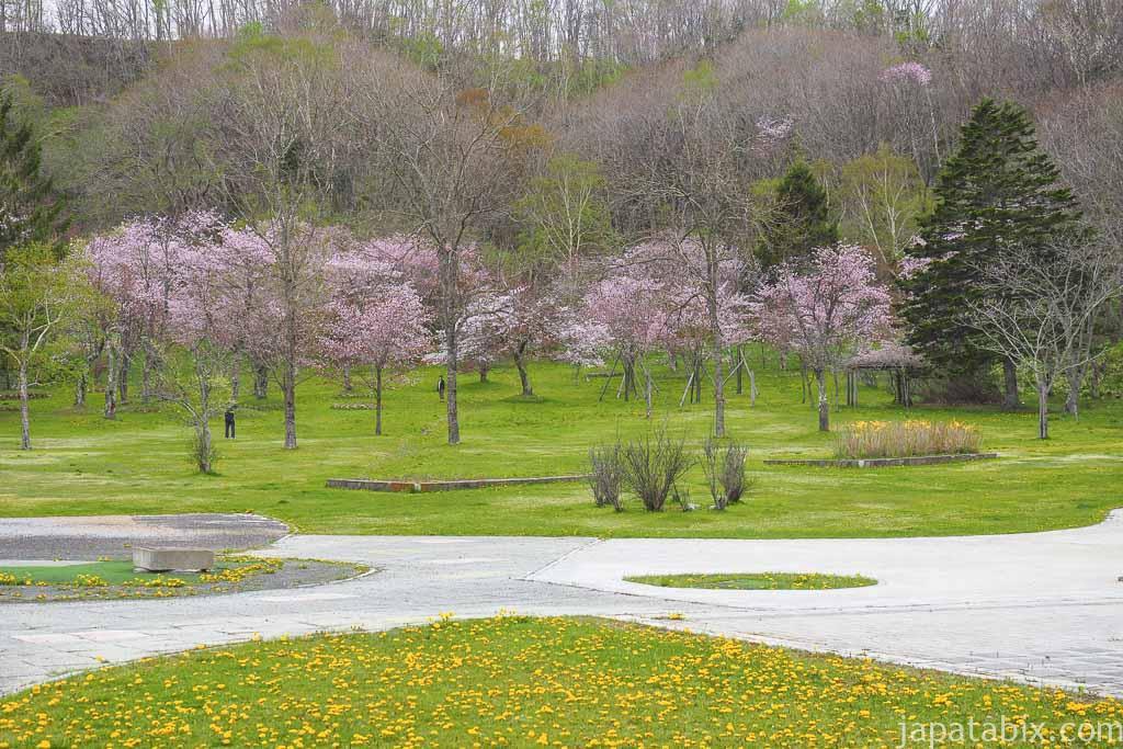 別保公園の桜まつり