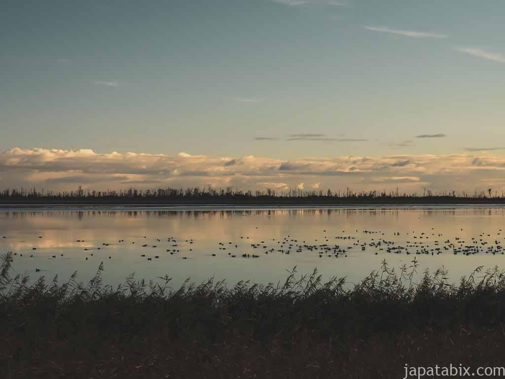 風連湖と春国岱