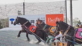 帯広競馬場 ばんえい十勝 レース開催