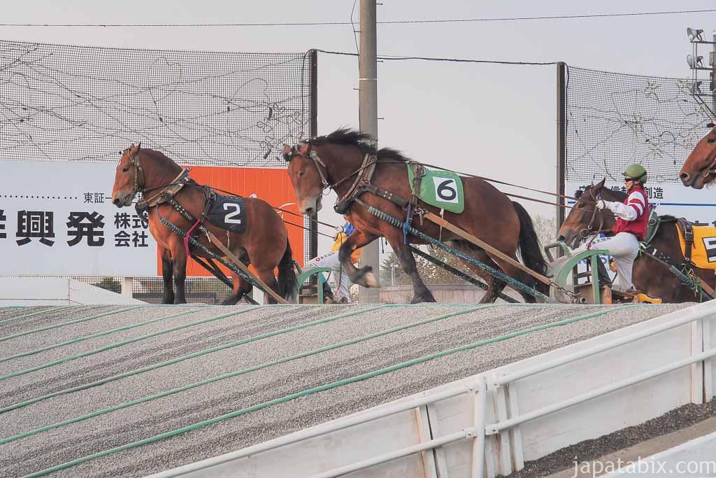 帯広競馬場 ばんえい十勝 レース開催 第2障害