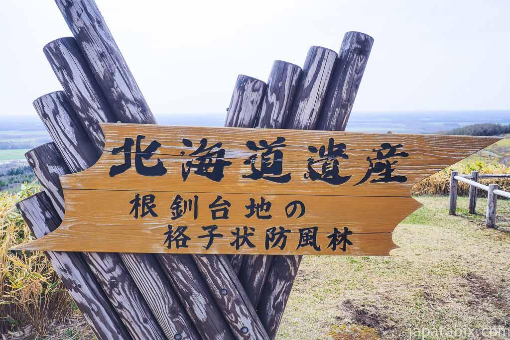 北海道遺産 根釧台地の格子状防風林