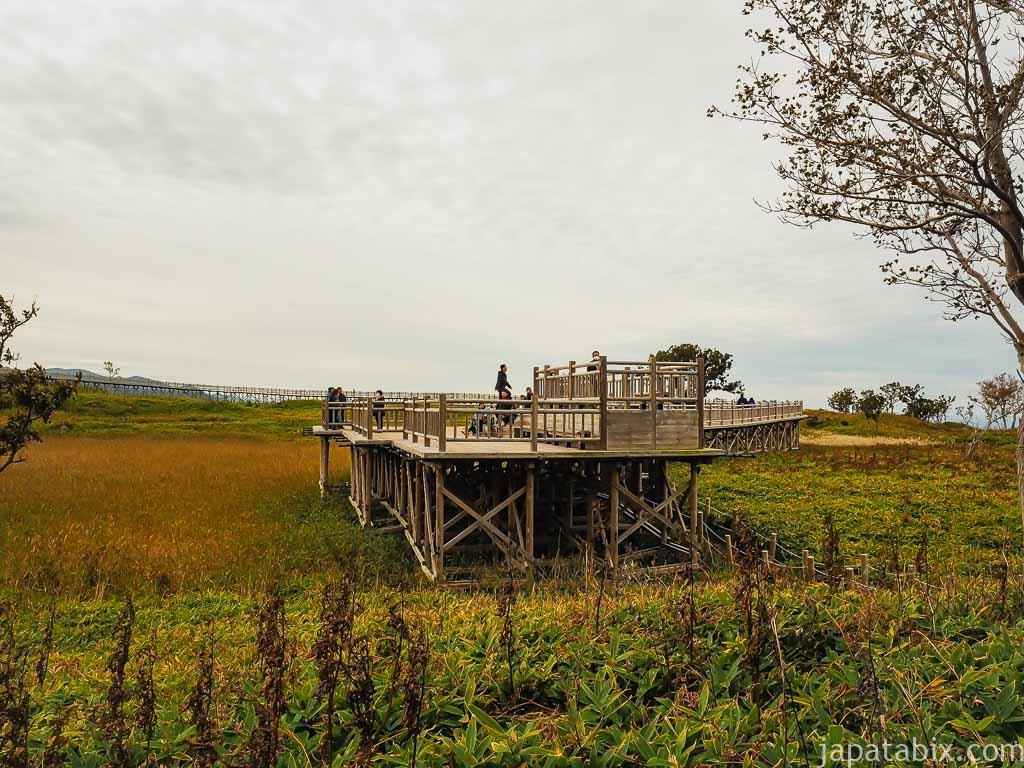 秋の知床五湖 湖畔展望台