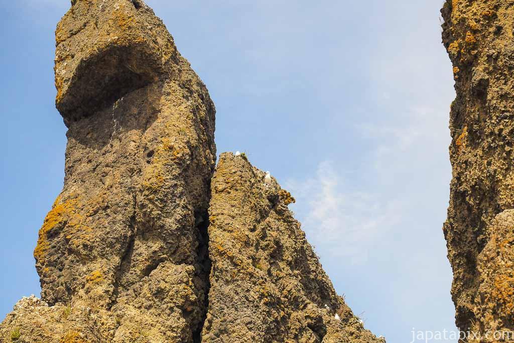 北海道斜里町 知床 ゴジラ岩のアップ