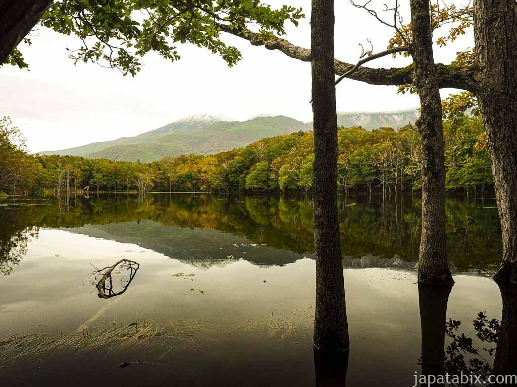 知床五湖の四湖