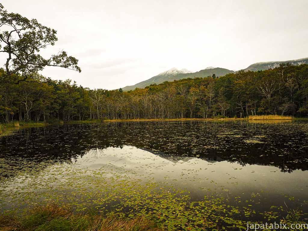 知床五湖の五湖