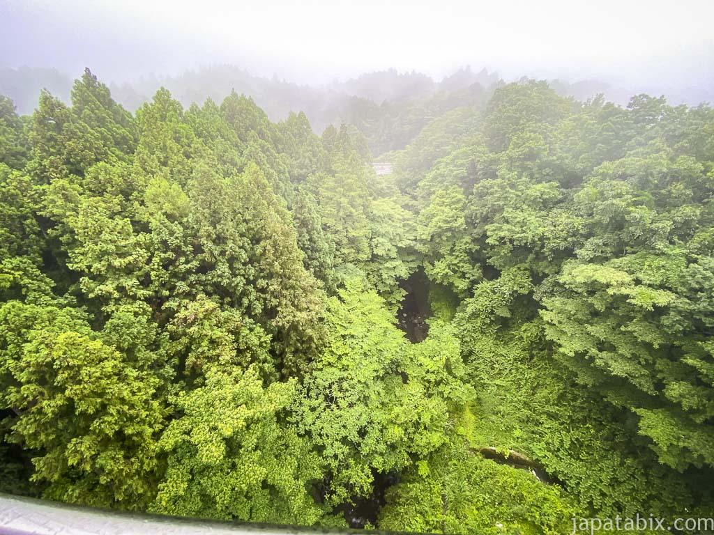 希望の大橋から見た渓谷