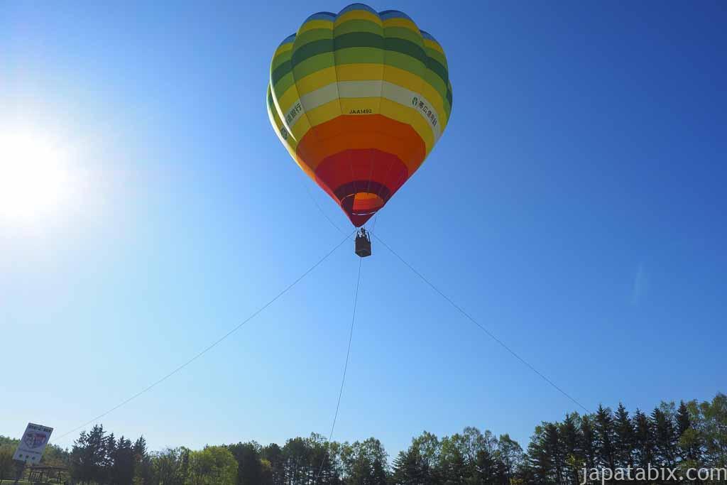 熱気球を見上げる