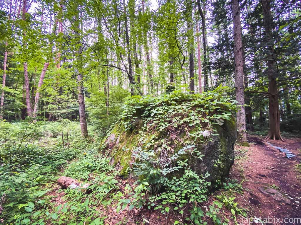 八ヶ岳リゾートアウトレット 神座石