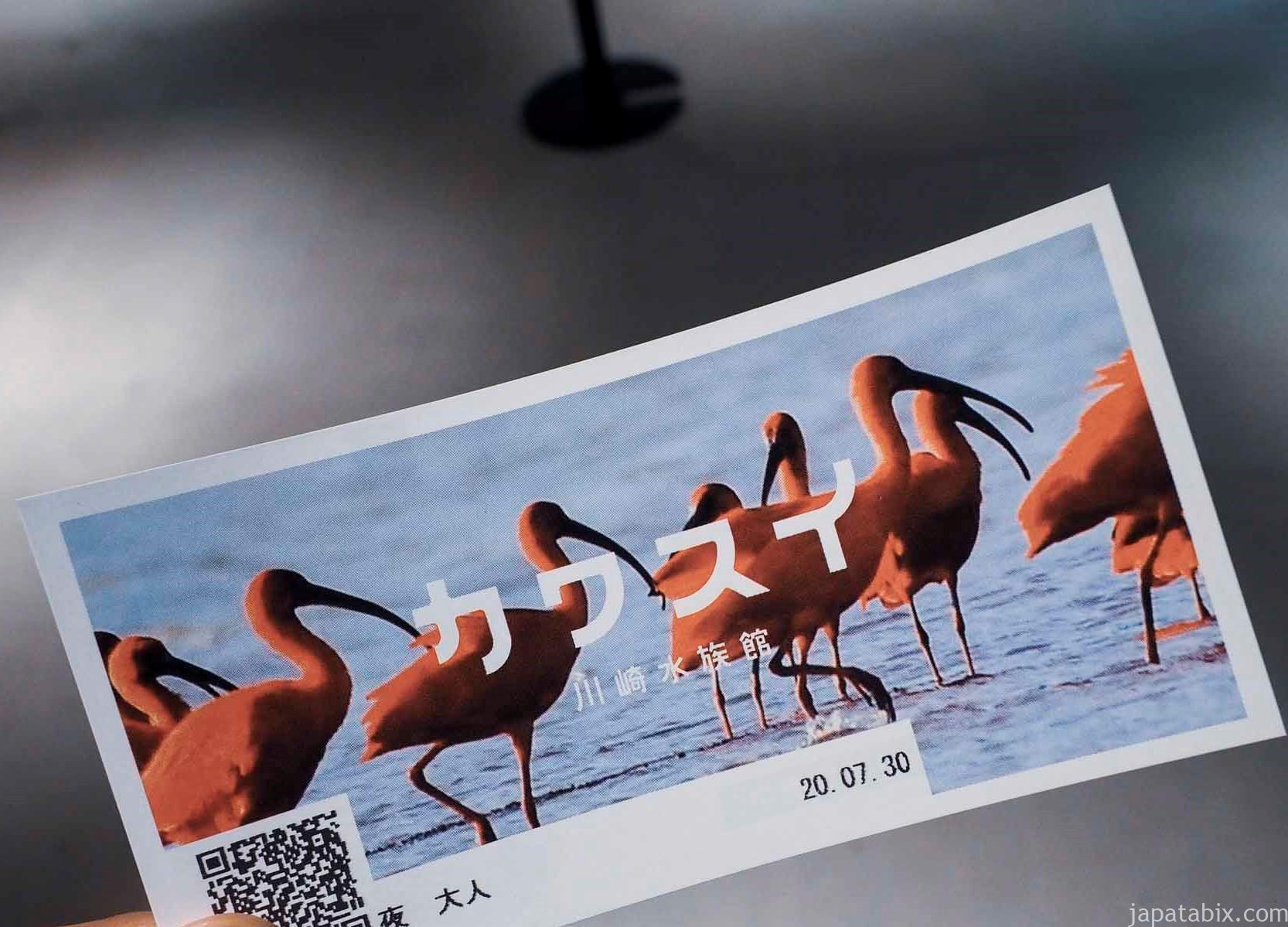 川崎水族館 カワスイ 夜の部チケット