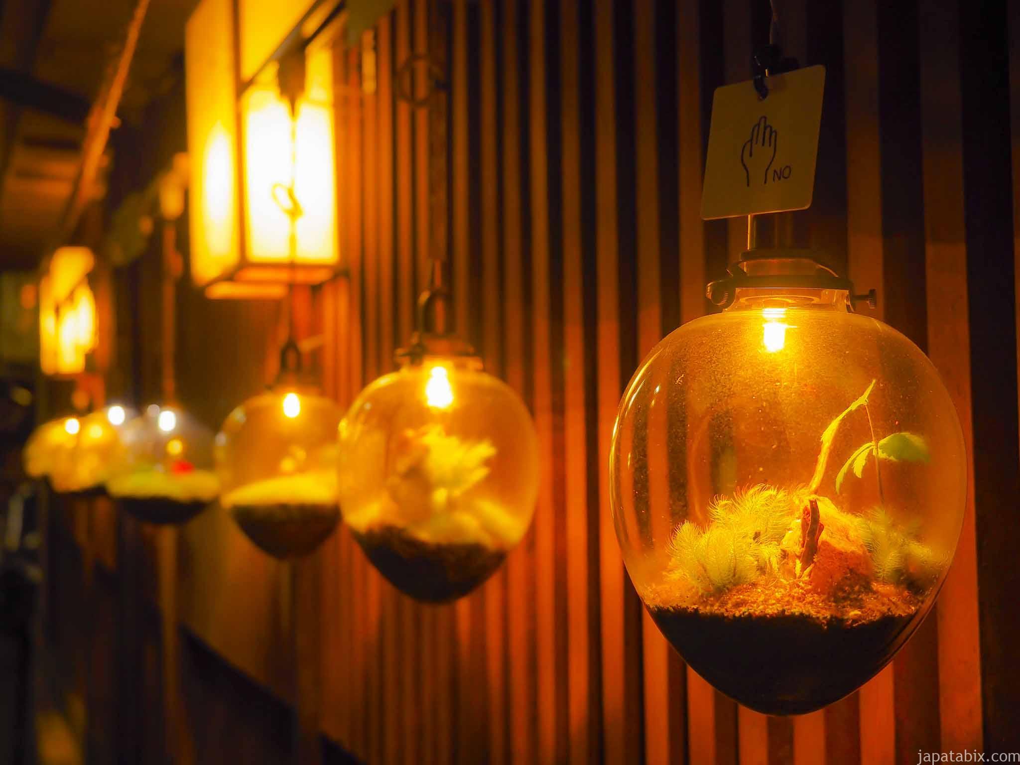 洗心館 松屋 苔ランプ