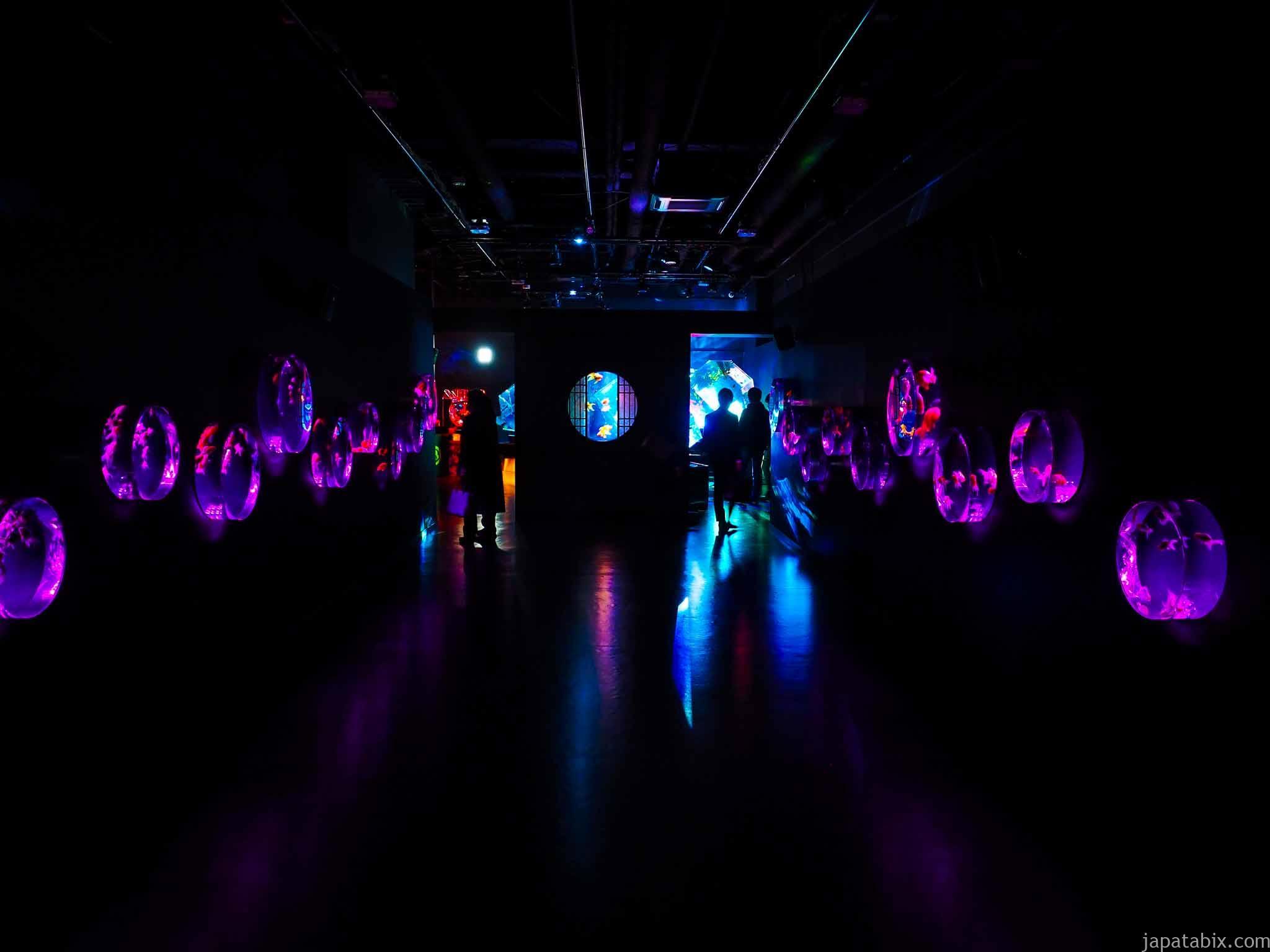 アートアクアリウム美術館 金魚コレクション 平日夜20時頃の混雑具合