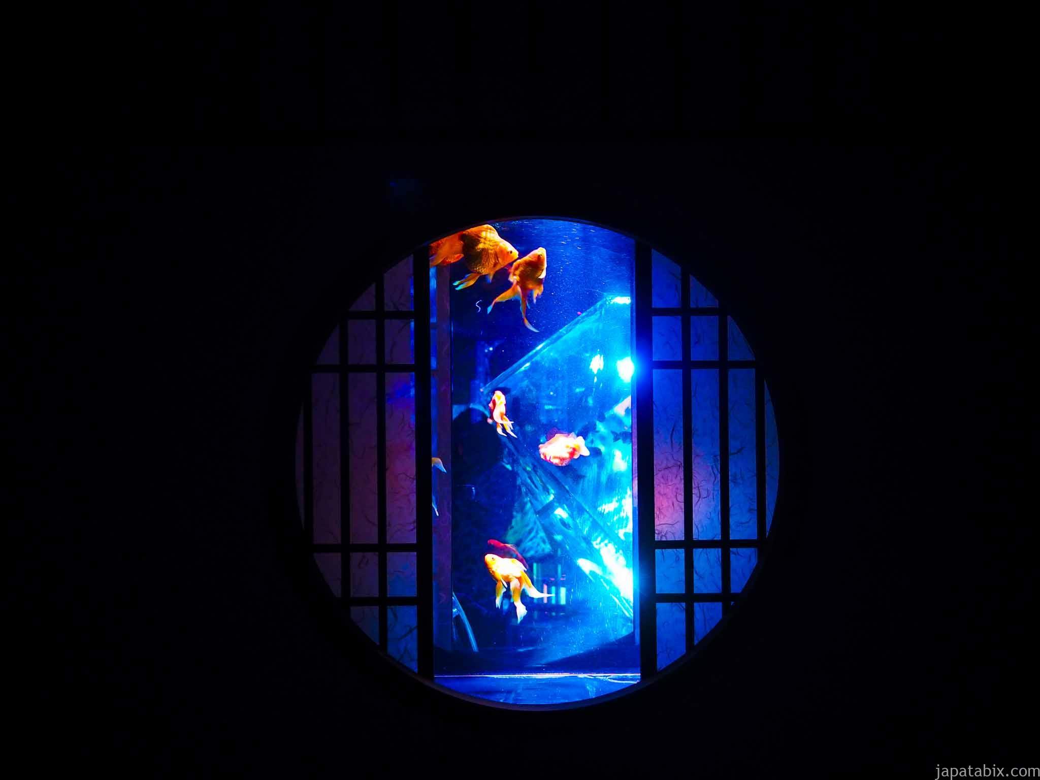 アートアクアリウム美術館 円窓リウム
