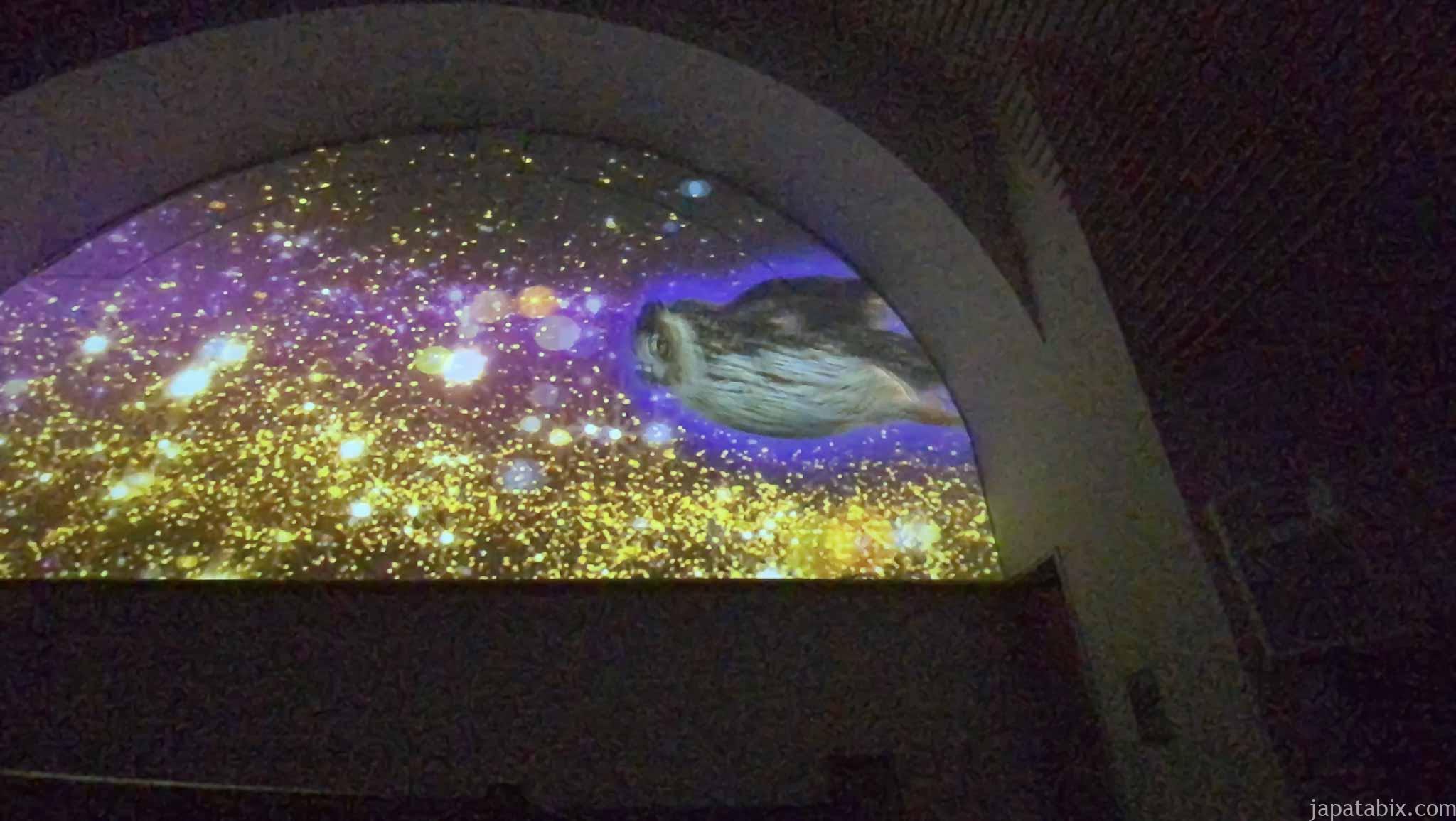ホテルサンバレー那須 太陽の教会のプロジェクションマッピング