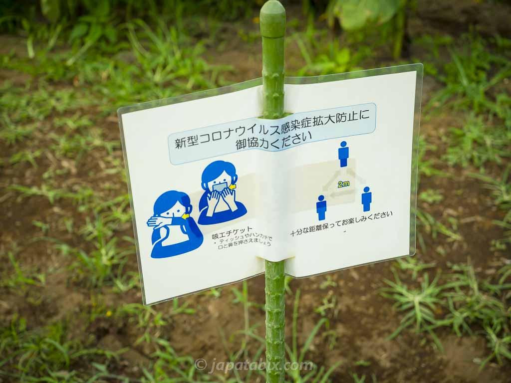 ひまわりガーデン武蔵村山 コロナ対策