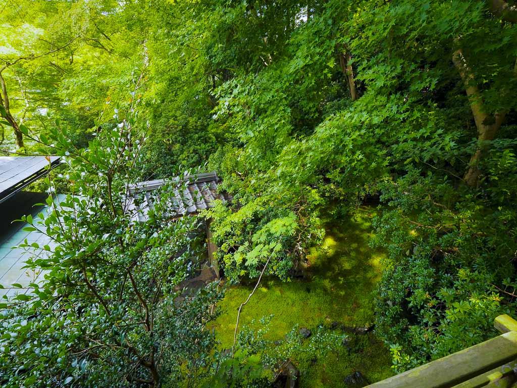 瑠璃光院 臥竜の庭へ