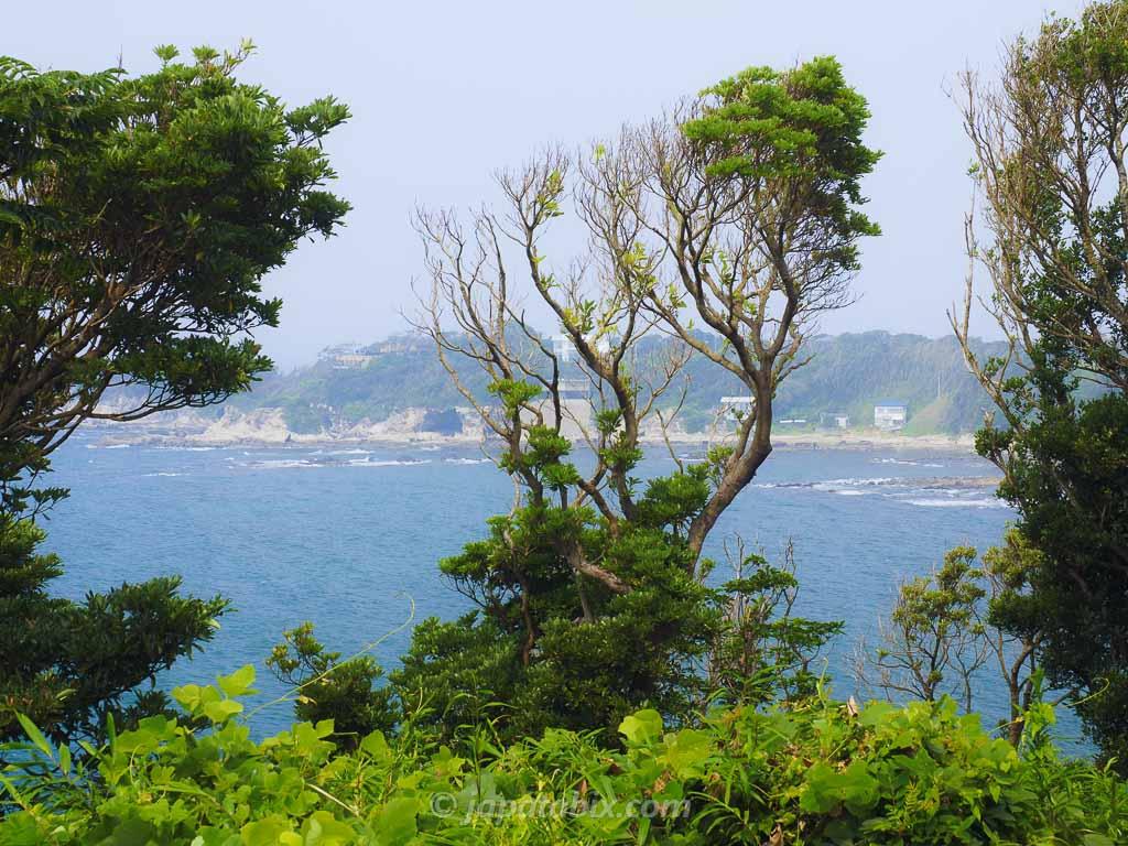 ソレイユの丘から見る海