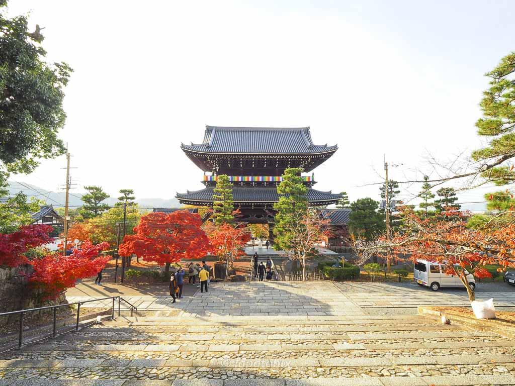 京都 くろ谷 金戒光明寺 山門を上から見る