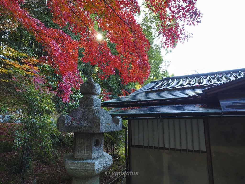 京都 くろ谷 金戒光明寺 紫雲の庭 紫雲亭