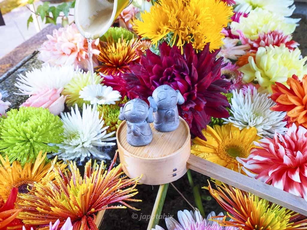 京都 勝林寺の花手水