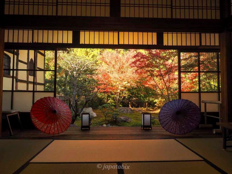 京都 勝林寺 紅葉と和傘