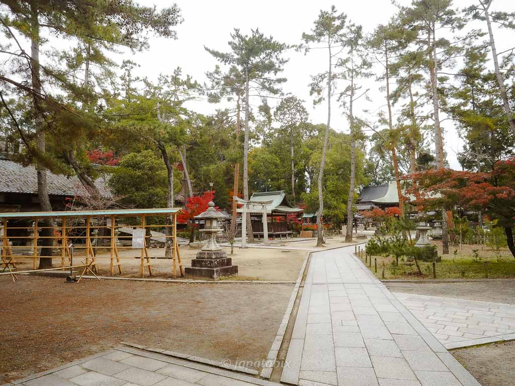 京都 今宮神社 境内
