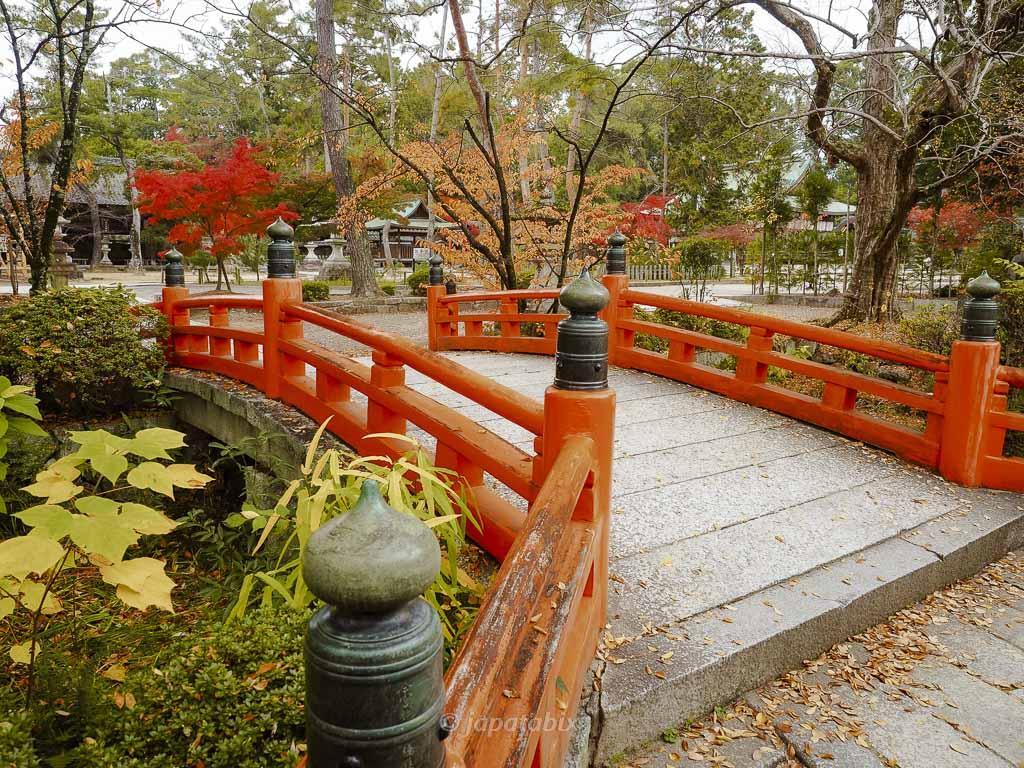 京都 今宮神社の紅葉