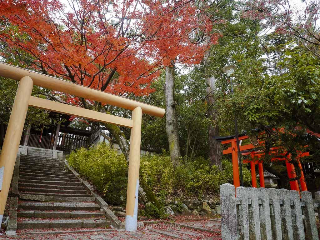 京都 今宮神社 月読社