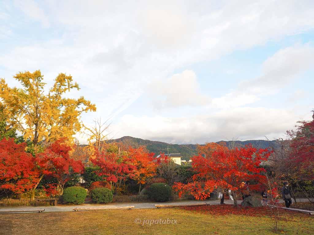 京都 勧修寺の紅葉