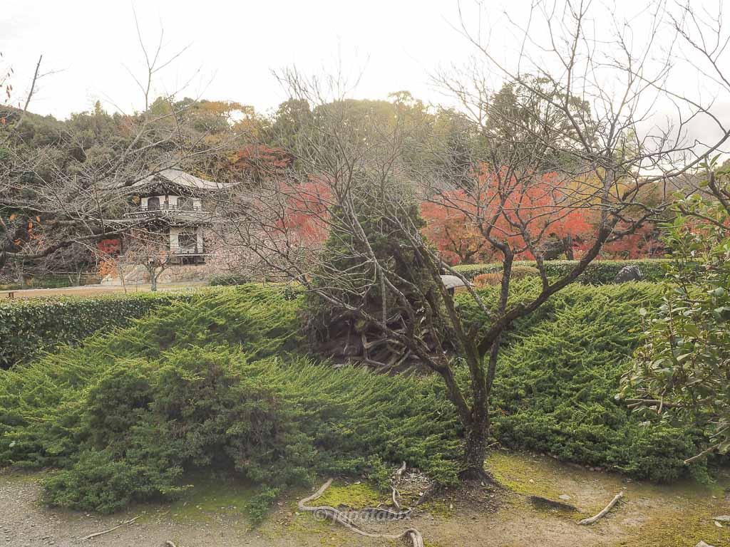 京都 勧修寺 書院周辺