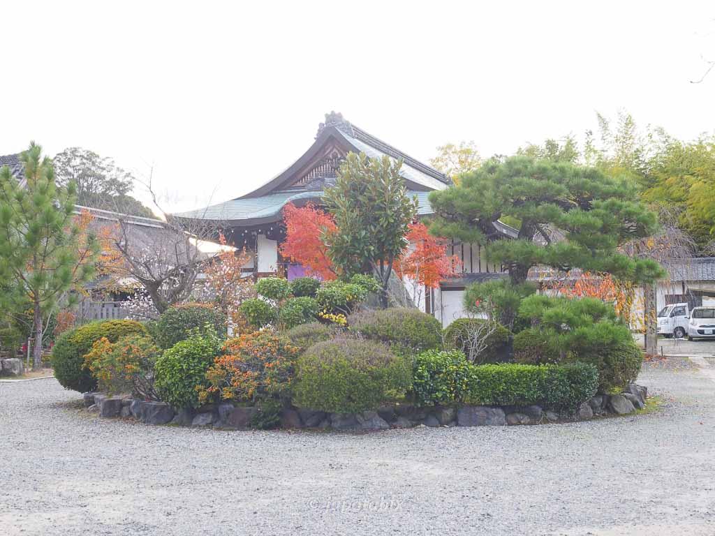 京都 勧修寺 紅葉