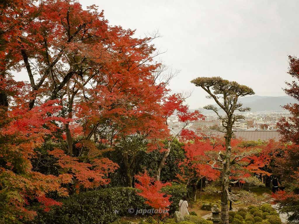 京都 金福寺 高台から見ると京都市街