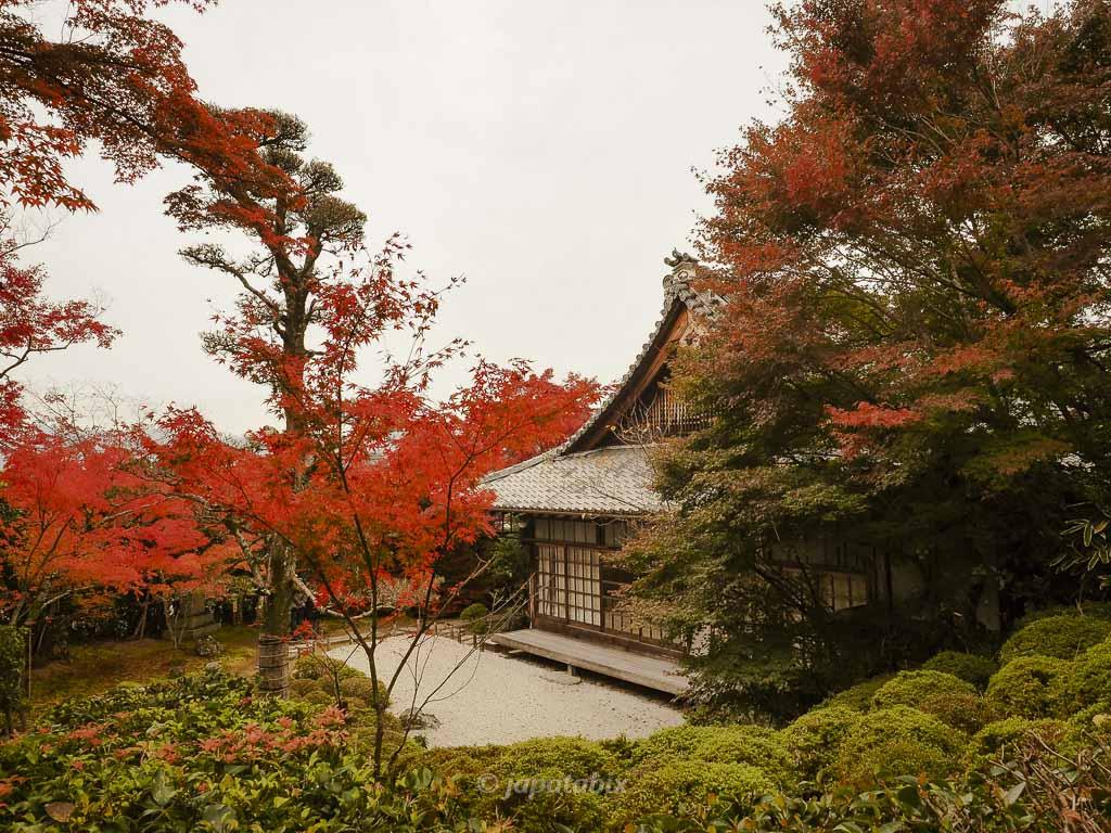 京都 金福寺 枯山水庭園