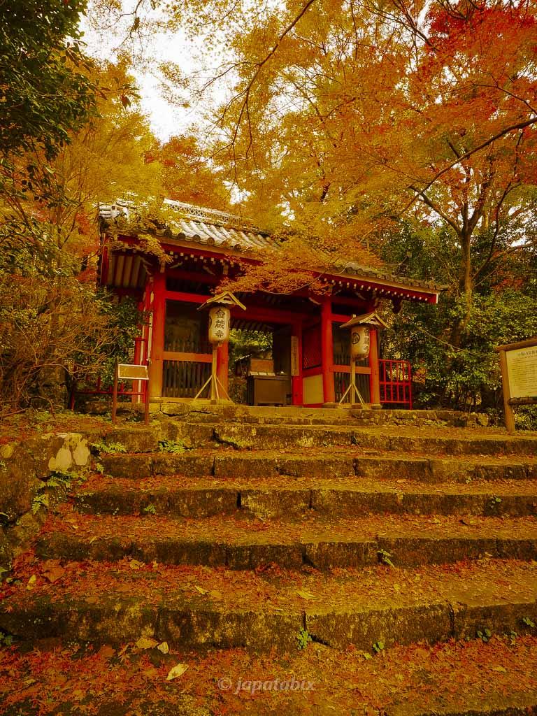 京都 金蔵寺 仁王門