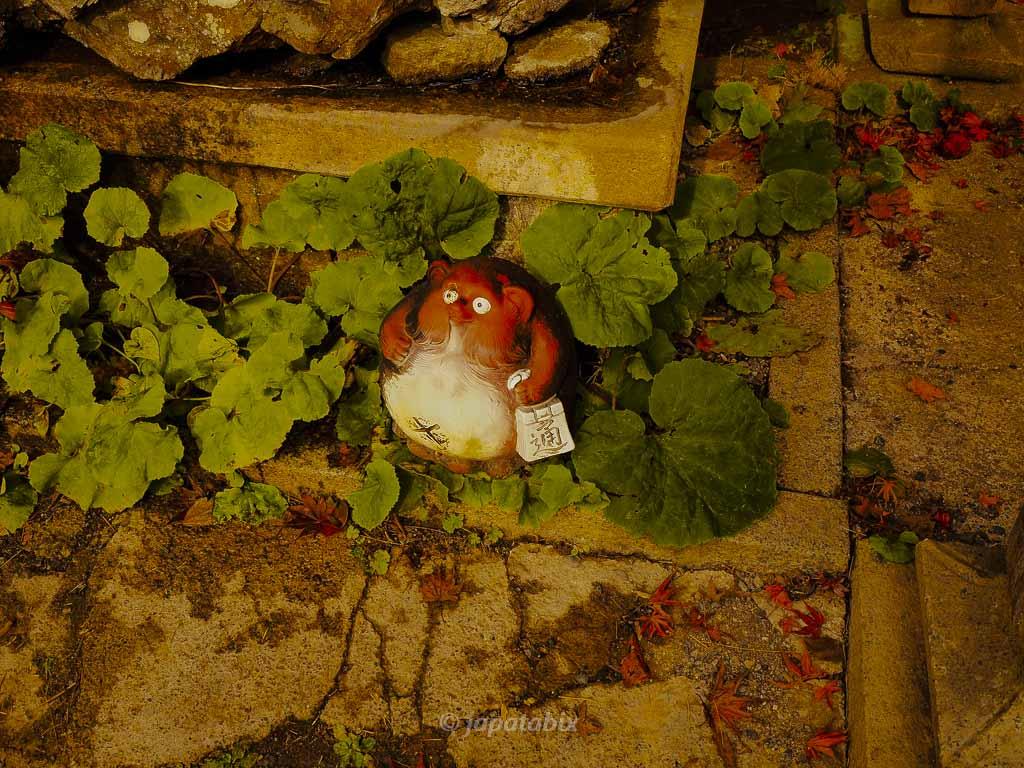 京都 金蔵寺 手水舎のたぬき