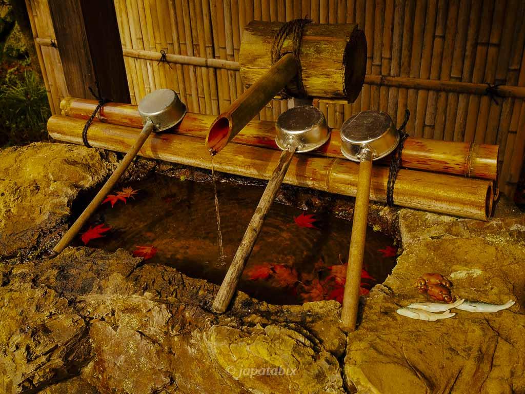 京都 金蔵寺 手水舎