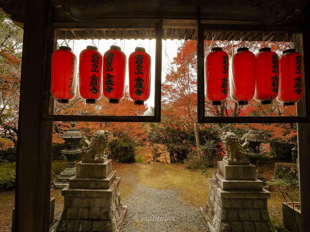 京都 金蔵寺 本堂
