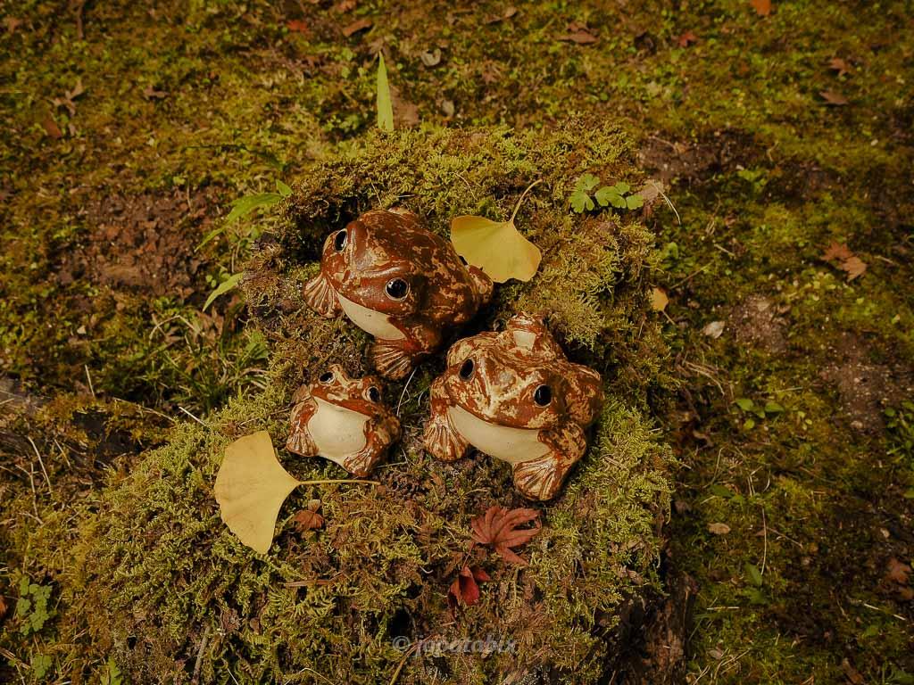 金蔵寺 蛙の置物