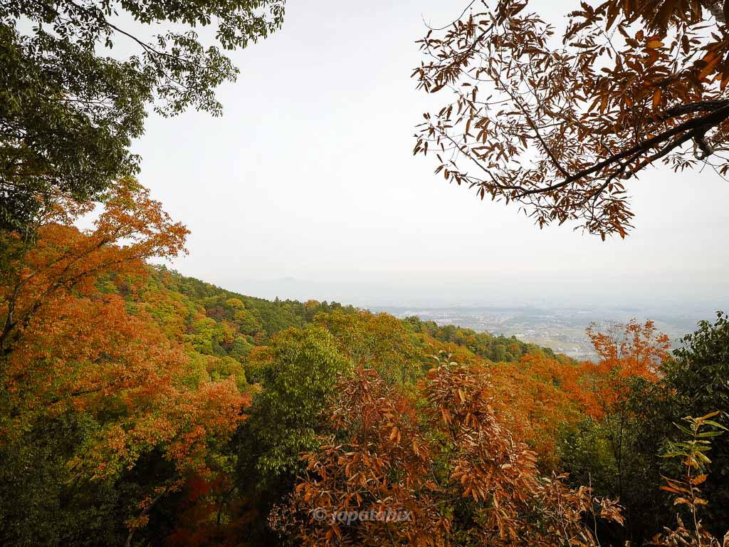 金蔵寺 見晴らし台からの眺望