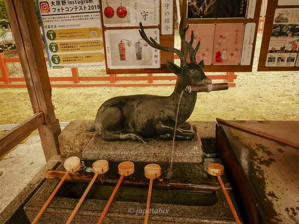 京都 大原野神社 手水舎