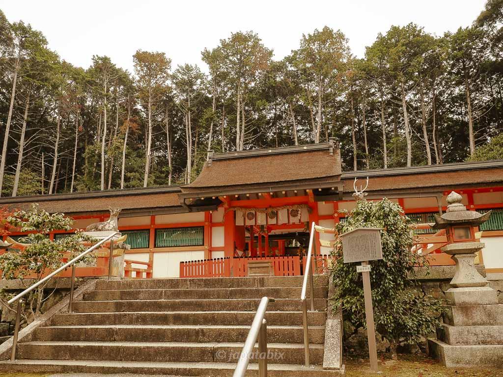 京都 大原野神社 本殿