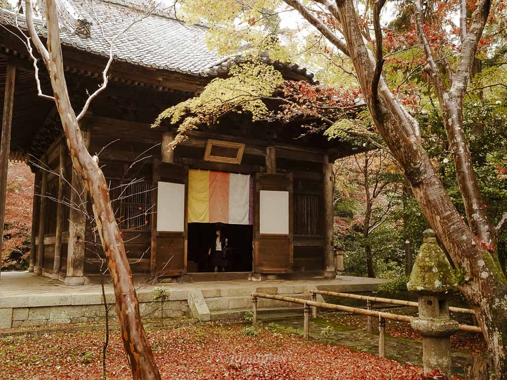 京都 蓮華寺の本堂